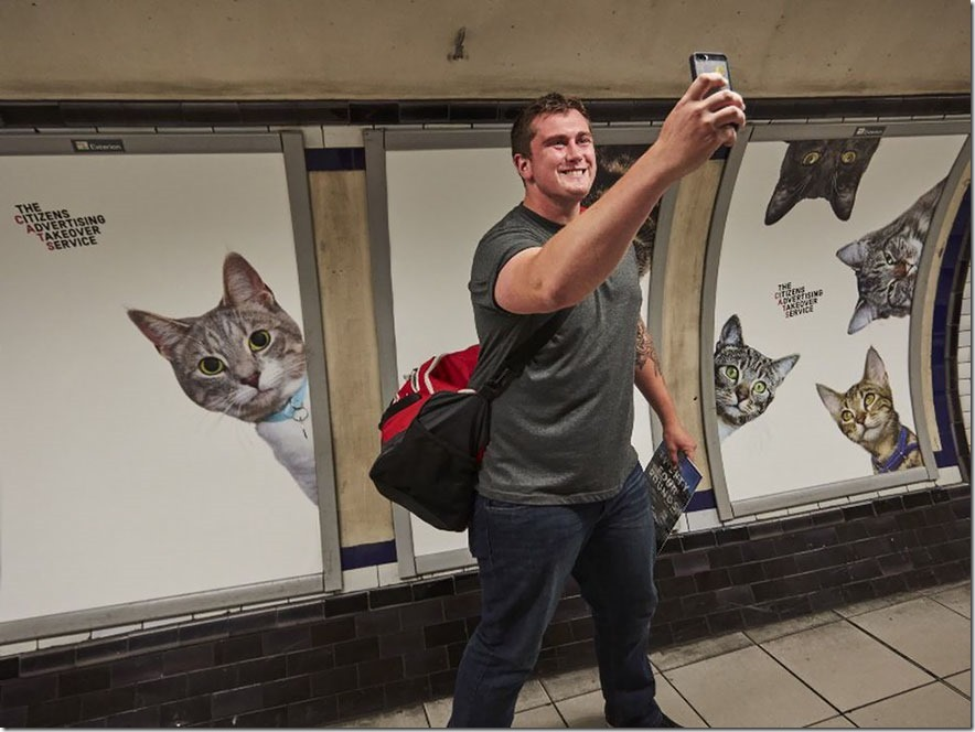 cat-ads-underground-subway-metro-london-8