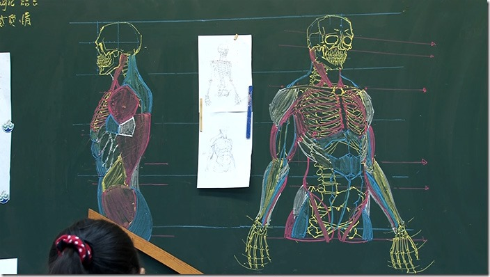 chinese-teacher-anatomical-chalkboard-drawings-3