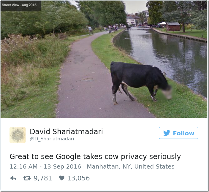 google-blurred-cow-face-privacy-1