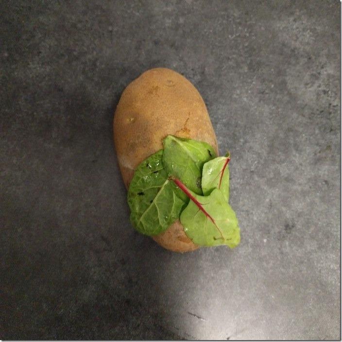 disney-princesses-potato-reimagined-1-586b7d08d0ff3__700