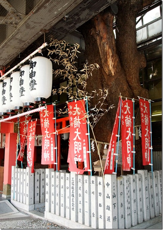 train-station-700-year-old-tree-kayashima-japan-7